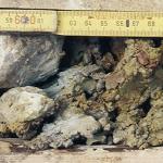 Abb. 3: Plastischer Ton und Felsbruchstückchen (aus Mergel, Silt- und Sandstein) an der Gleitfläche