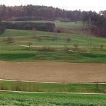 Abb. 1:Ansicht der Rutschung Böbikon, Nordschweiz. Der in der rechten Bildhälfte erkennbare Strommast ist durch die Rutschung direkt gefährdet.